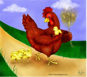 Thanksgiving lesson plan hen and chicks lesson for kids
